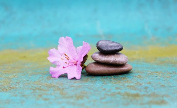 Satya i Ahimsa: cal triar?